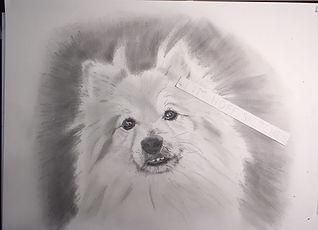 Missy Brossart Louie sketch (2).JPG