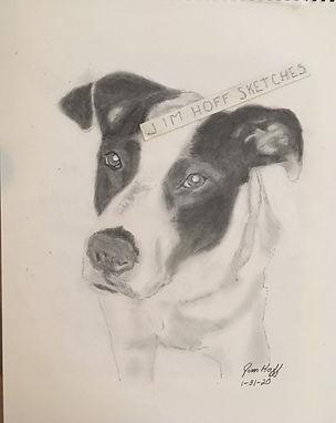 Riley sketch (2).JPG