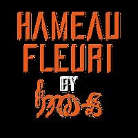 logo HF BLANC.png