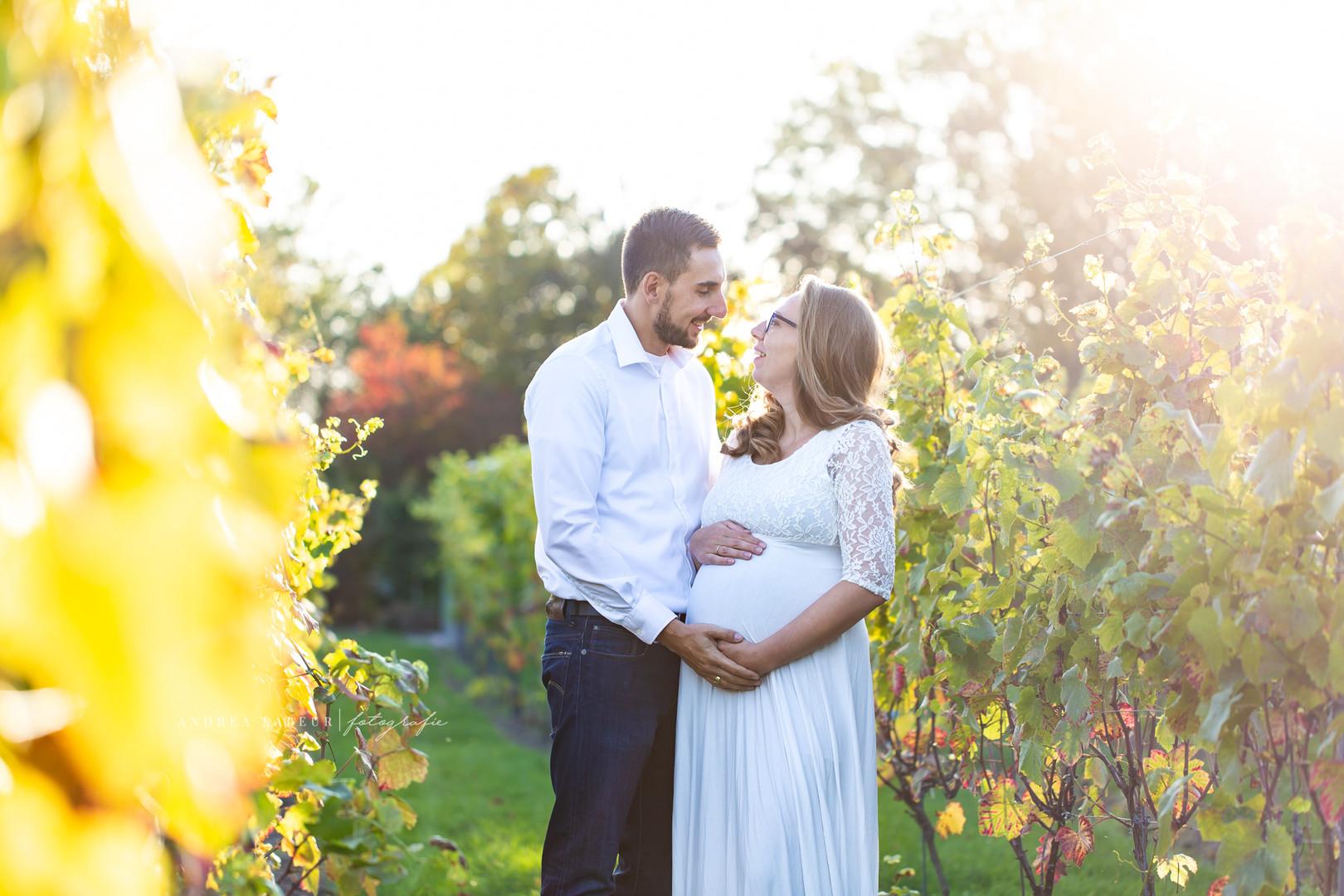 Zwangerschaps foto's in wijngaard