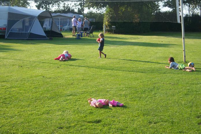 Ruim veld met volleybalnet en andere recreatiemogelijkheden