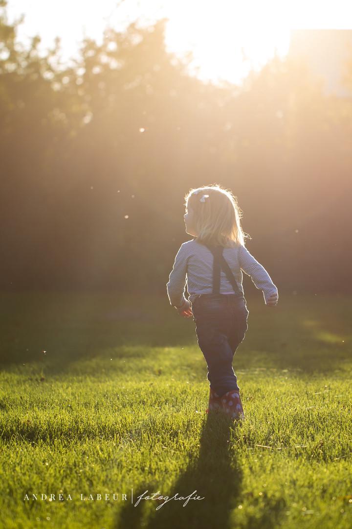 Portret fotografie Zeeland - zonsondergang