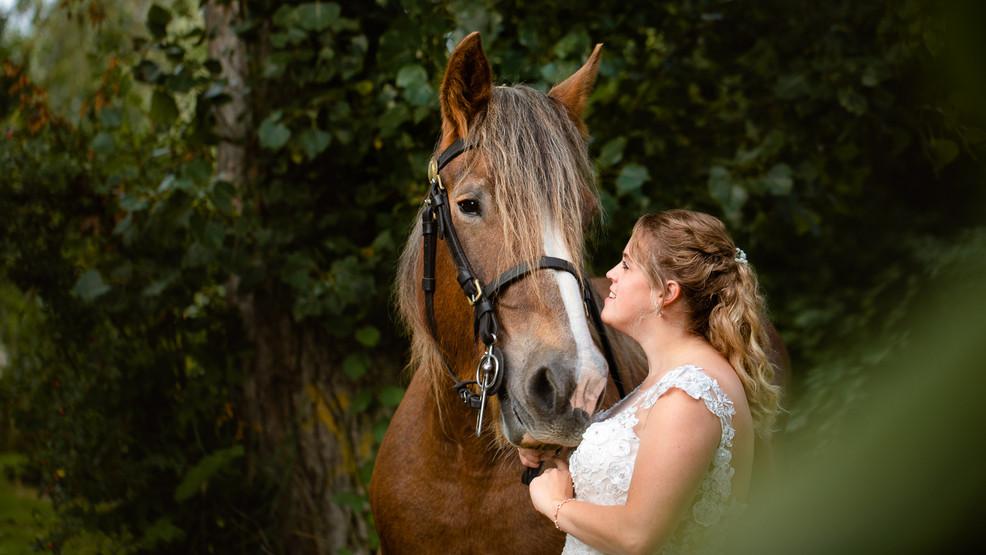Bruid met trekpaard
