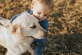 Golden Retriever and Grand Baby