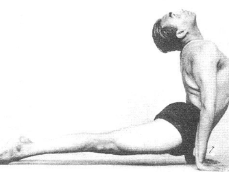 Sun Salutation Anatomy Part 3