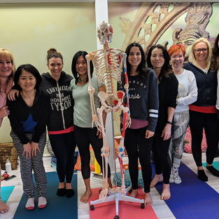 Yoga Teacher Training 2017