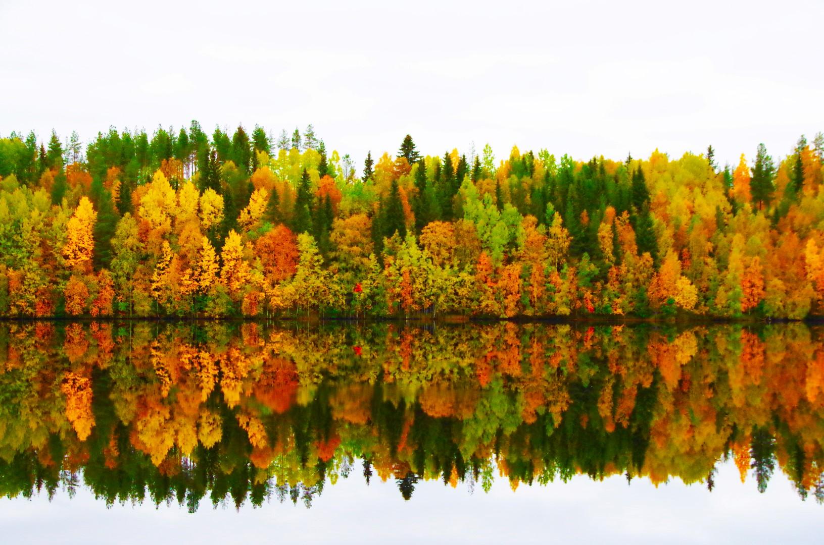 Laurihouse Lapland nature autumn 05