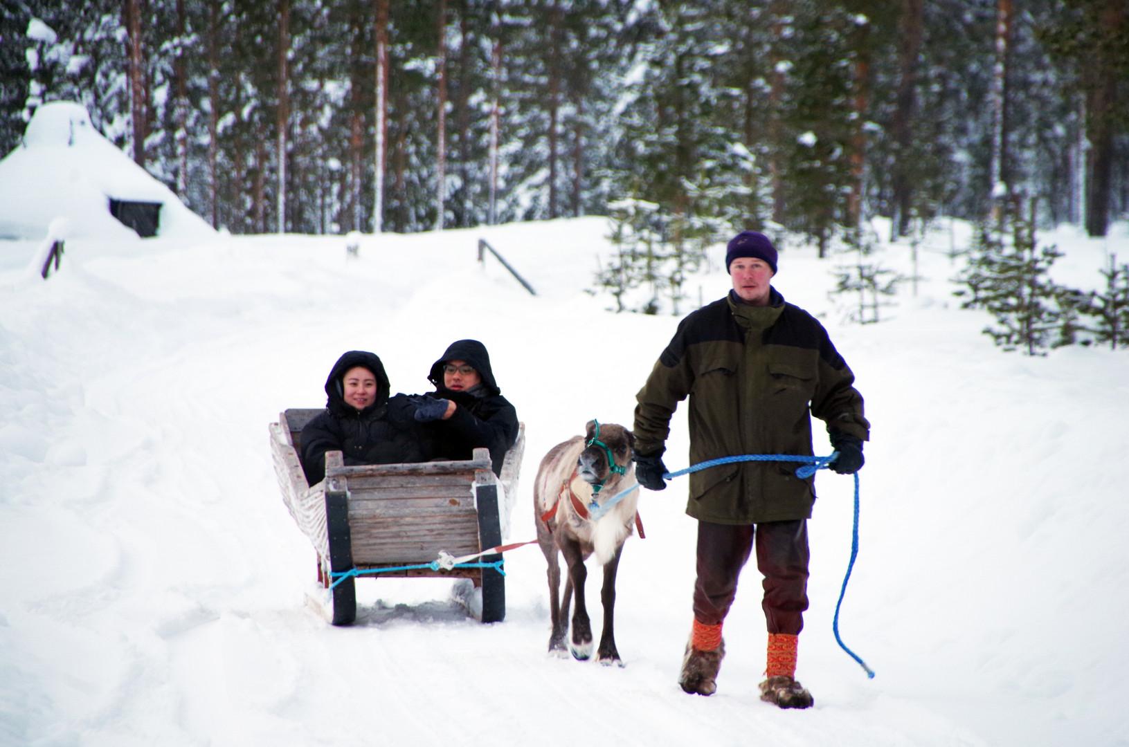 Reindeer Farm 92.jpg