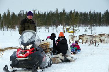 Reindeer Farm 46.jpg