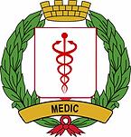 Medic badge final.png