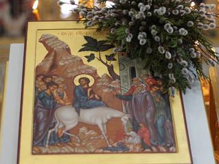 25 апреля 2021 г. - Неделя Вайи, Вход Господень в Иерусалим