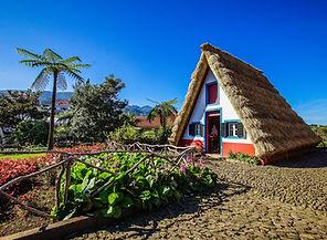 Madeira Island_8