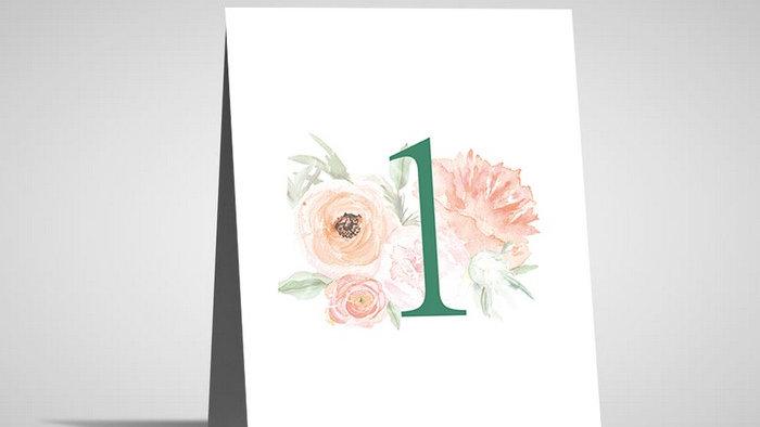 Numar de masa floral NMF11