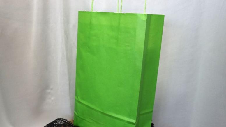 Punga (green_bag_L)