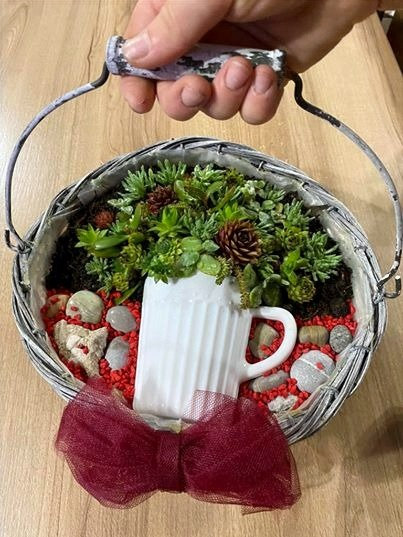 Aranjament floral cu suculente
