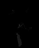finished flower logo3.png