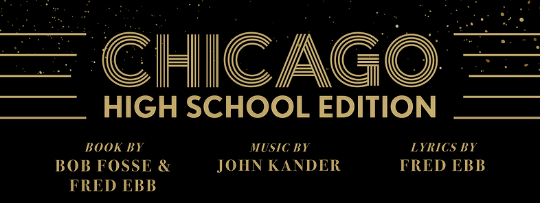 Chicago_HSE-banner.png