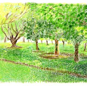 緑の風景001w.jpg