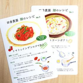 畑のレシピ