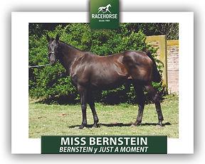 MISS BERNSTEIN.jpg