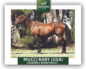 7 MUCCI BABY.jpg