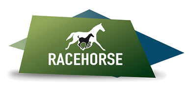 logo racehorse transparente.png