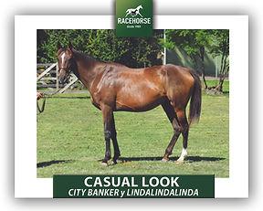 CASUAL LOOK.jpg