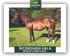 INCENDIARIA GALA.jpg