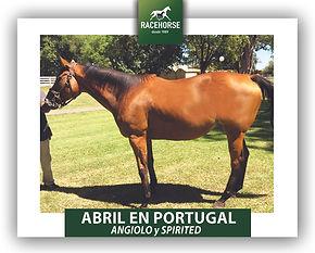 46 ABRIL EN PORTUGAL.jpg