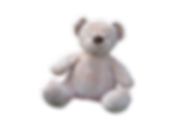 teddy-bear-1085162.png