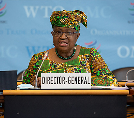 Trade and Environment Structured Discussions Among WTO Member Group Get Underway