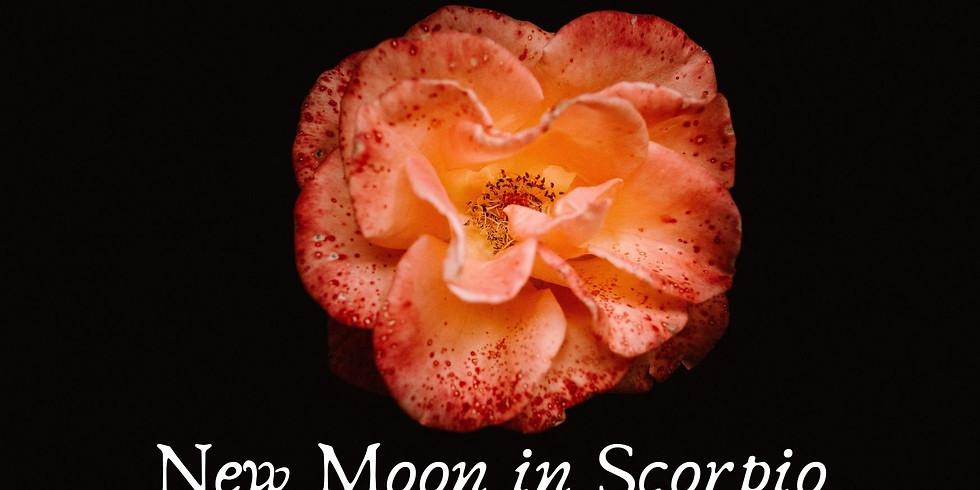 Moon Prayer & Healing Circle for Emotional Healing & Blissful New Beginnings
