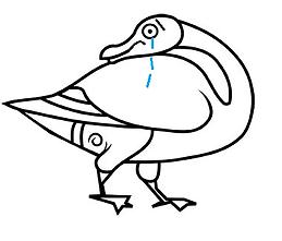 Sad Duck.png