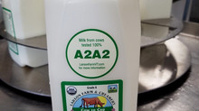Our Milk is now from our grass fed cows that are tested 100% A2A2!