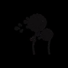 wishflower transparent background.png