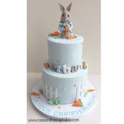 Peter rabbit themed christening cake