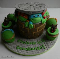 Turtles & Scooby Doo Cake & Cupcakes