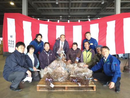 福島大島地区にワッサー苗の贈呈をしました