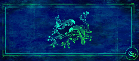 toucans banner.jpg