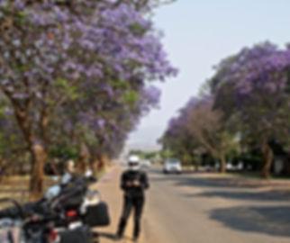 Frühling Südafrika Motorradreise