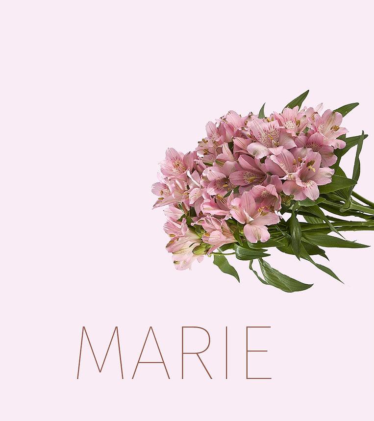 MariePoster.jpg