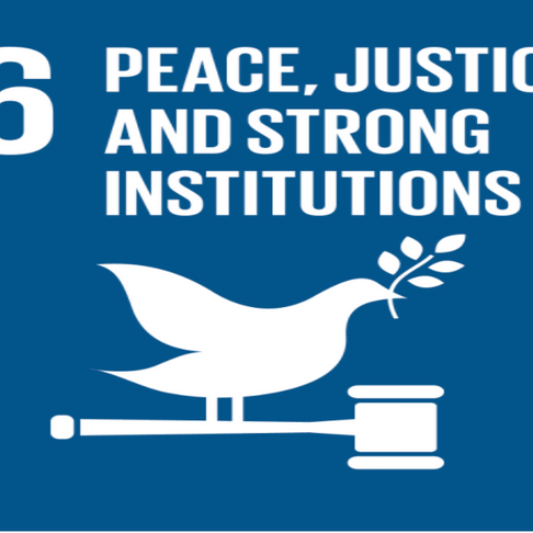 How SDG 16.4 is Making You Safer