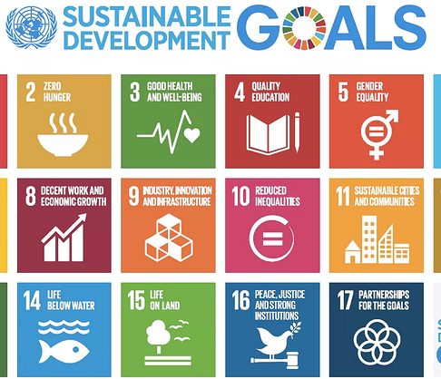 The Importance of the Intergenerational Dialogues on Sustainable Development Goals
