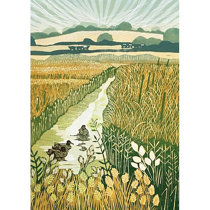 Mallards in the Marshes Card