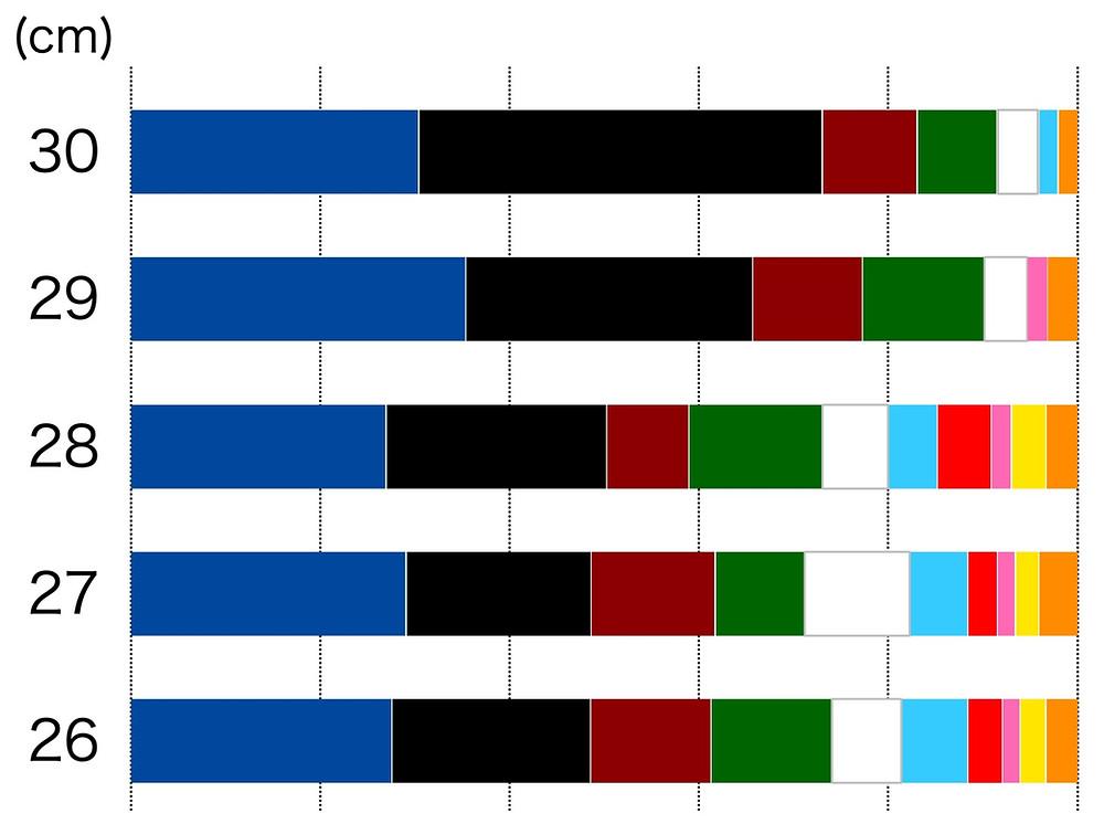 ビーチサンダルのソール、26cmから30cmは紺と黒が人気です。