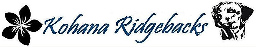 Kohana, Rhodesian Ridgebacks, Ridgeback dogs, Rhodesian Ridgeback Puppies