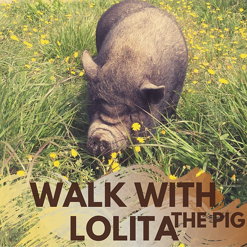 Walk with Lolita - The Pig