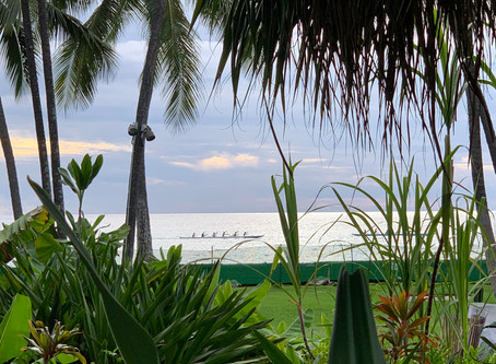 楽園の風景
