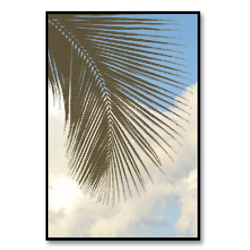 Palm Tree-B2