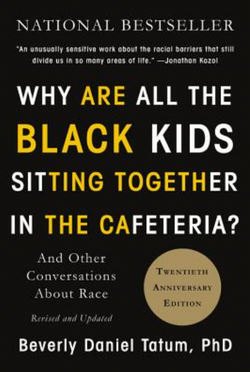Why Are All the Black Kids Sitting Together in the Cafeteria?: And Other Conversations about Race